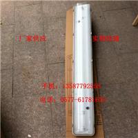FAY-2*18xJ带应急防水防尘防腐荧光灯