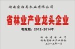 湖南省林业龙头企业
