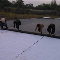 广州珠江水泥厂固体污染物堆场环保防渗处理