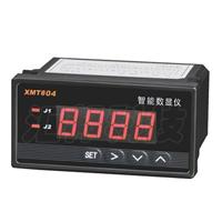 XMT804智能数显仪(济南现货)