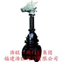 福建Z941W-10电动明杆式闸阀