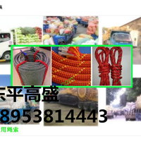 东平县高盛工贸有限公司