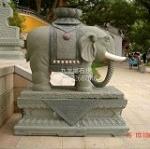 供应青石大象  石象批发  大象生产厂家