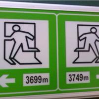 深圳厂家LED隧道电光标志 疏散标志