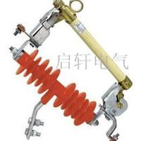 HRW11-12/200A跌落式熔断器|10KV熔断器厂家