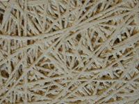 装饰用木丝吸音板,吸音板