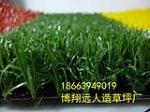 青岛博翔远人造草坪公司