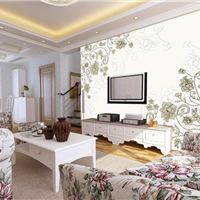 家用客厅彩雕背景墙