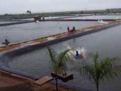 供应河南人工湖人工湿地防渗膜土工膜