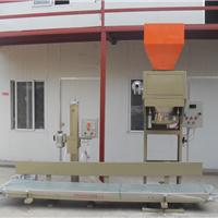 供应焦作颗粒包装机 全自动干果颗粒包装机