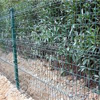 花卉防护铁丝网-防护铁丝网生产厂家