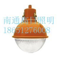 HGC278A三防灯金卤灯