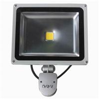 供应坪山LED投光灯LED泛光灯LED室外广告灯