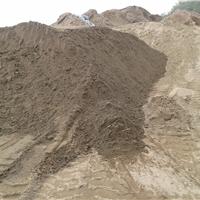 供应重庆地区烘干河沙