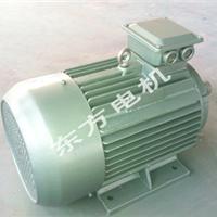 提供三相异步电动机多种型号