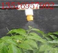 供应不锈钢雾化降温喷嘴高压微雾加湿喷头