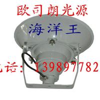 供应海洋王公司,海洋王灯具,NTC9200防震型超强投光灯