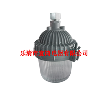 专供高品质防眩应急平台灯 直销NFE9112