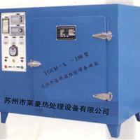 供应远红外高低温程控焊条烘箱