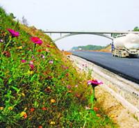 衡水市裕源边坡绿化工程有限公司