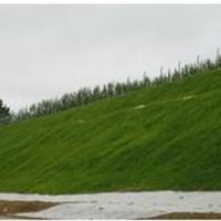 供应裕源边坡绿化工程有限公司