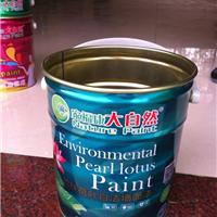 批发油漆涂料十大品牌招商大自然新品上市