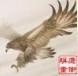 淮安鹰衡称重设备制造有限公司