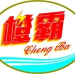 垫江县橙霸电气加工厂
