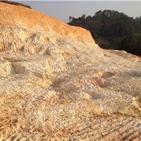 广东大量供应陶瓷白泥陶瓷土