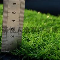 供应山东人工草坪-塑料假草坪-幼儿园草坪