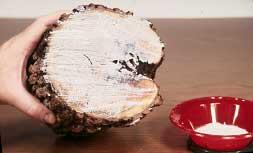 原木防裂密封液体蜡保护木材端头液体蜡