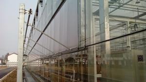 供应汨罗薄膜蔬菜棚及农业温室