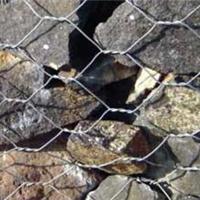 合金钢丝护坡国标石笼网―河北博安金属网栏