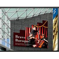 供应夏普60寸液晶大屏,拥有3C验证多项专利