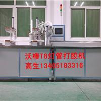 供应深圳T8灯管点胶机