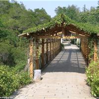 供应园林防腐木廊架