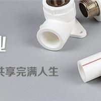 三明PPR给水管 PPR热水管 PPR管件价格表