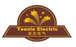 厦门泰尼电气有限公司