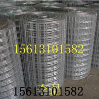洛阳热镀锌抗裂网,1*18米成卷建筑挂网