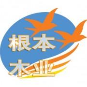沭阳县根本木制品厂