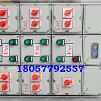 防爆动力配电箱 BXD51带总开关防爆配电箱