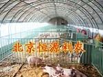 北京恒源利农大棚厂家