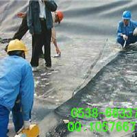 供应土工膜,垃圾填埋场防渗,蓄水池防渗