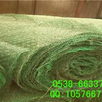 供应上海三维植被网,边坡绿化