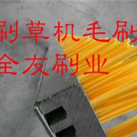 供应刷草机毛刷|梳草机毛刷板