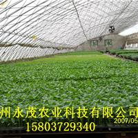郑州永茂农业科技有限公司