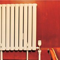 供应鲁本斯钢制暖气片立普2550系列