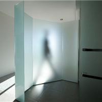 供应办公室门玻璃 浴室门玻璃 钢化喷砂玻璃