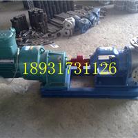 高粘度泵/泊东兴NYP-30/1.0型高粘度转子泵