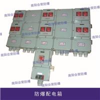 供应化工设备专用防爆配电箱